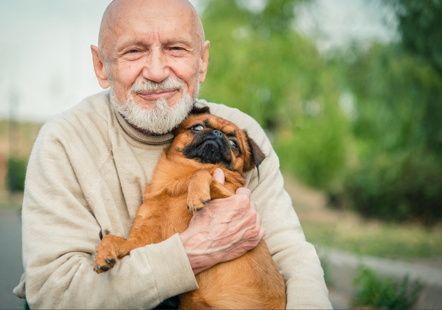 WHICH DOG BREEDS ARE BEST FOR OLDER PEOPLE?